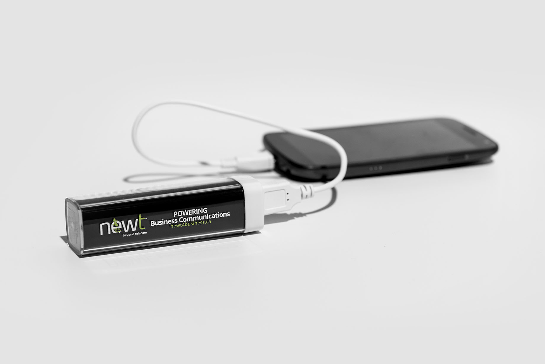 NEWT Product Photography